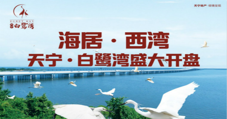 广西防城港 天宁白鹭湾火爆线上开盘